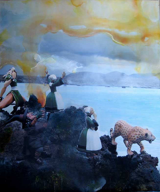 Bécassine en Islande (61cm x 50cm) - 2008